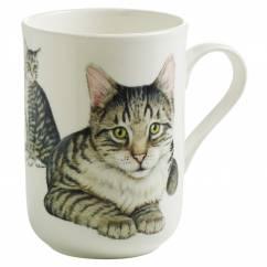 PETS Becher Europäisch Kurzhaar Katze, Bone China Porzellan, in Geschenkbox
